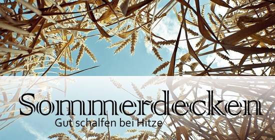 sommerdecken-test