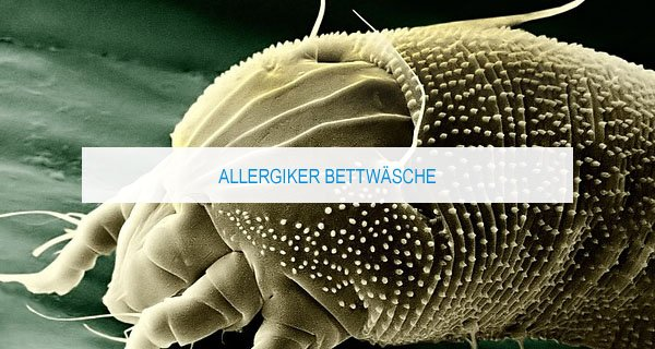 allergiker-bettwaesche-test