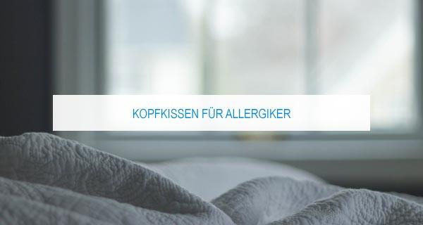Kopfkissen für Allergiker: Die besten Kissen gegen Milben